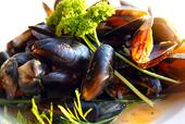 Färska Medelhavs musslor