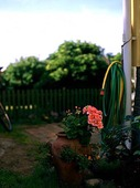 Trädgårdslang