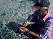 Fiskare lagar nät