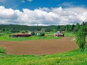 Jordbrukslandskap i Värmland