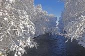 Rolfsån vintertid, Halland