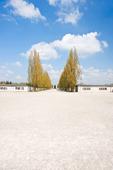 Dachau koncentrationsläger