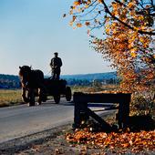 Bonde på häst och vagn