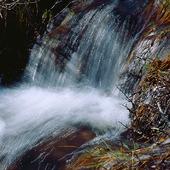 Vattenfall på våren