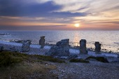 Raukar på Gotland