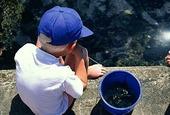 Pojke fiskar krabbor