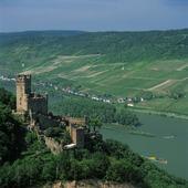Slott vid Rhen, Tyskland