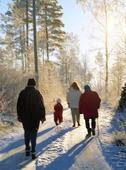 Promenad på vinterväg