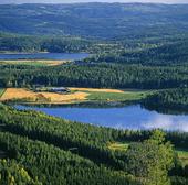 Sveriges mittpunkt, Medelpad