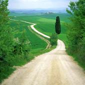 Väg i Toscana, Italien