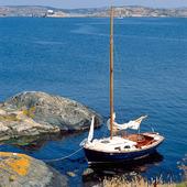 Mindre segelbåt i naturhamn