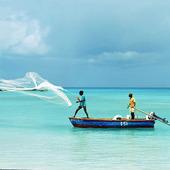 Fiskare i Karibiska sjön, Barbados
