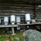 Mjölkkannor vid fäbod i Dalarna
