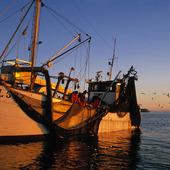 Havsfiske, Bohuslän