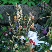 Blommor på grav