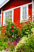 Sommarstuga med blommor i trädgården