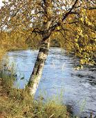 Vattendrag, Finland