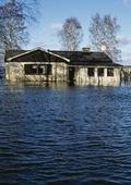 Översvämning av hus