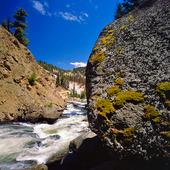 Tower River i Yellowstone National Park, USA
