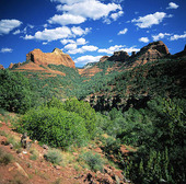 Oak Creek Canyon i Arizona, USA