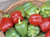 Röd och grön paprika