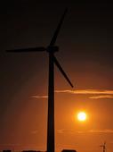 Vindkraftverk i solnedgång