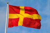 Skånes landskapsflagga